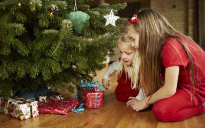 DSU i opråb til regeringen: Lad os få en julehjælpepakke til fattige og udsatte nu
